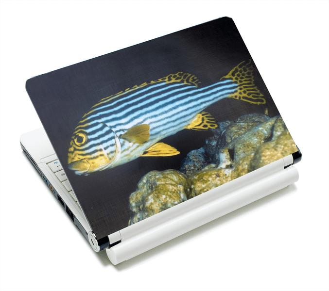 Datorskin - Vacker fisk