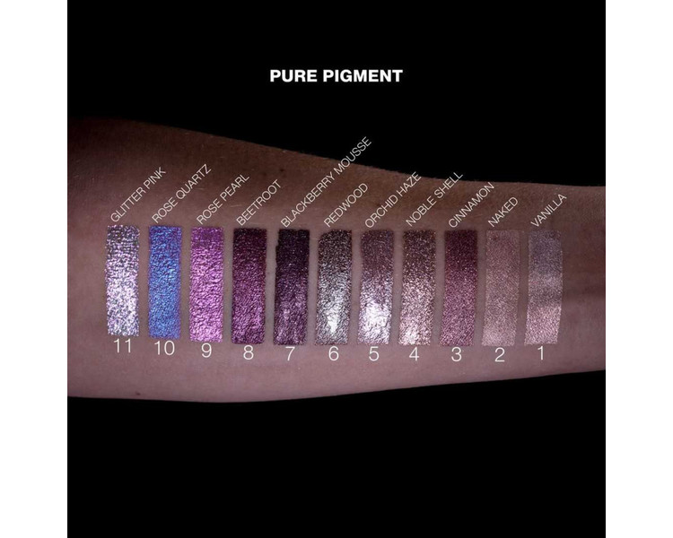 Pierre René Eyeshadow Pure Pigment 22 Deep Black
