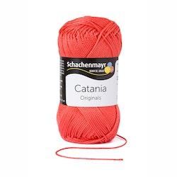 Catania - kamelie 252