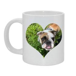 Kära hund... Alt 3 Bild & text