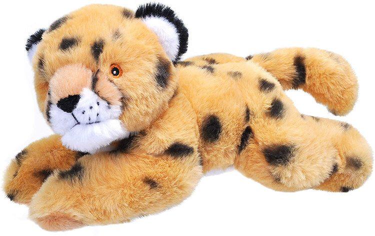 Ekologisk Gepard Liten