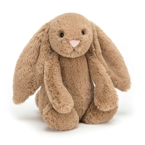 Bashful Bunny Biscuit 31cm