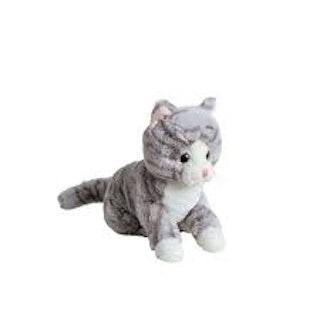 Randig grå katt