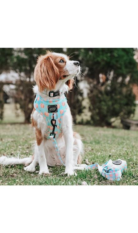 Peach, Please' Adjustable Dog Harness