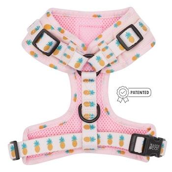 Puppy Colada' Adjustable Dog Harness