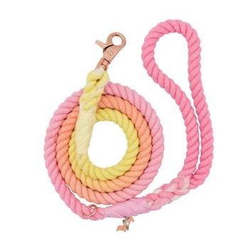 Dog Rope Leash - Sunkissed