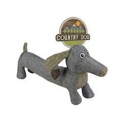 Country Dog buddy