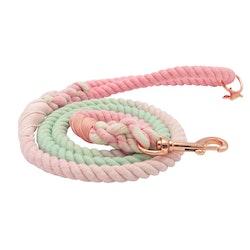 Dog Rope Leash - Sherbet