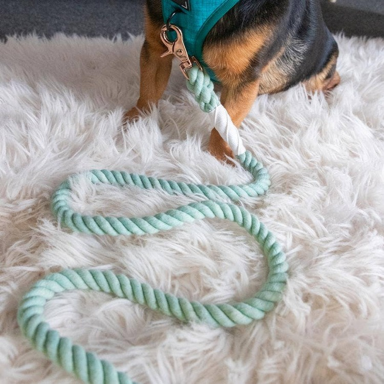 Dog Rope Leash - Mint to Be