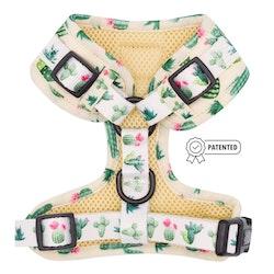 Sass on Point' Adjustable Dog Harness