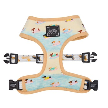 Dachshund in the Beach' Reversible Dog Harness