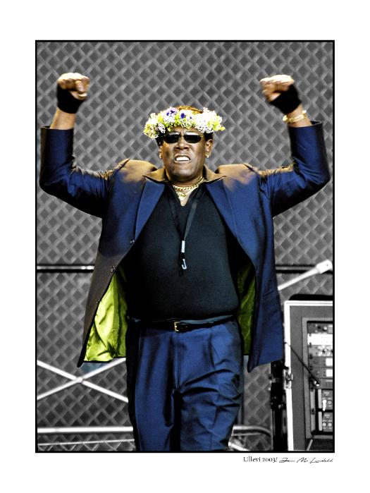 Clarence Clemons - The Big Man