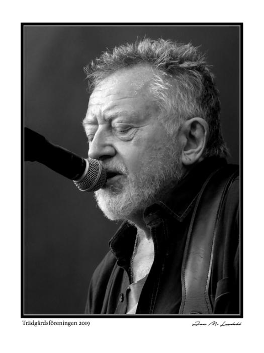 Ulf Lundell - 2019