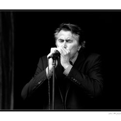 -- Bryan Ferry --