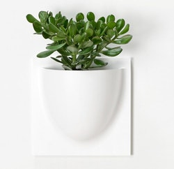 Vertiplants veggpotte, hvit