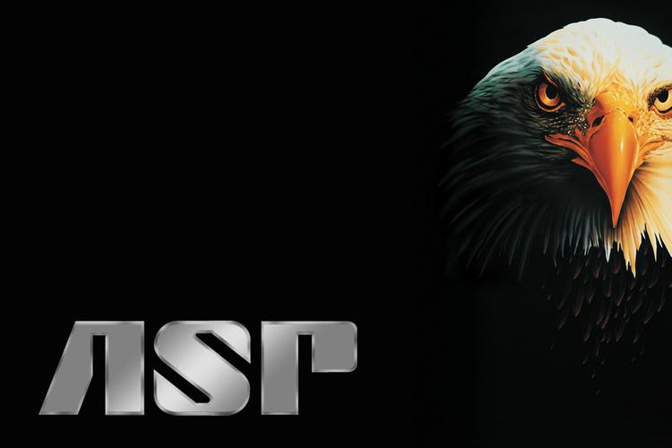 """ASP Expanderbatong 16"""" med svart ändstycke"""