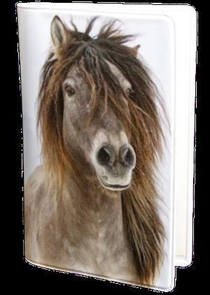 Häst Islänning