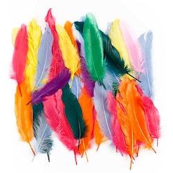 Indianfjädrar
