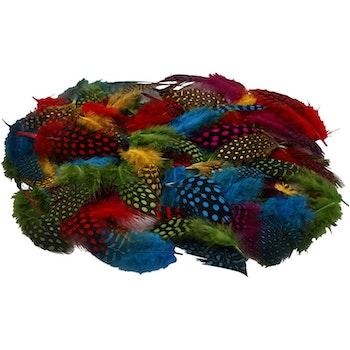 Pärlhönsfjädrar