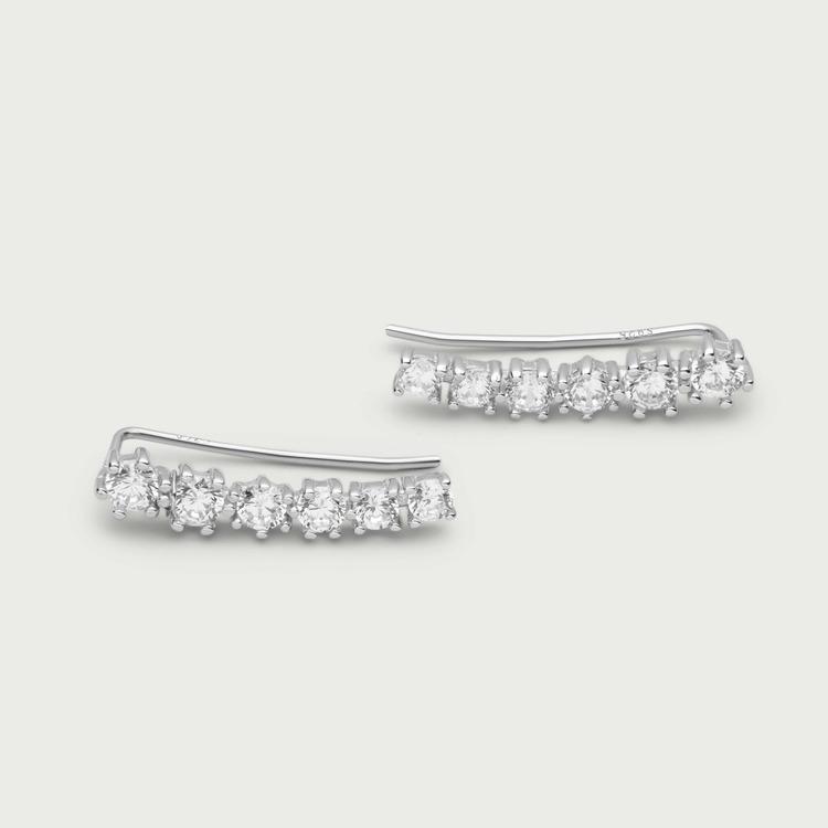 Dazzling earrings silver
