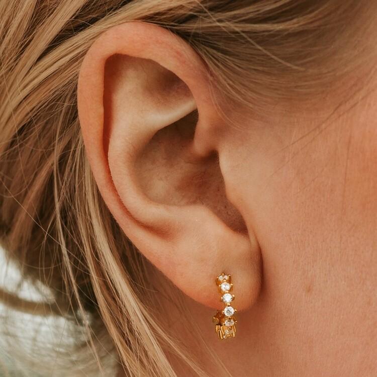 Dreamy earrings