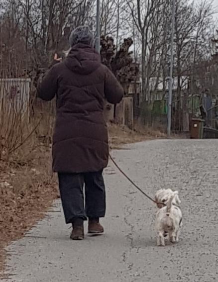 Lek och Lär med hunden