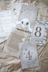 Mrs Mighetto - Baby Cards Ditt barns första år