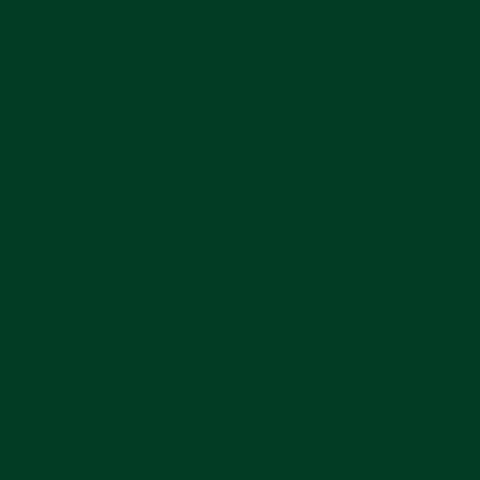 Siser Easyweed Mörkgrön