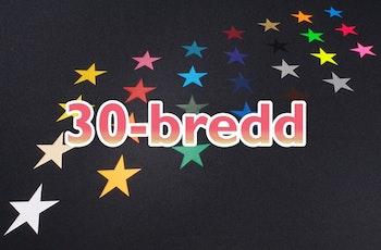 Siser Easyweed 30-bredd