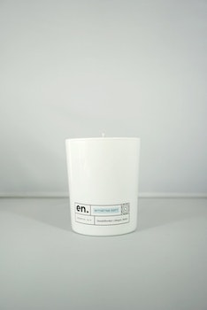 en. FRESHLY WASHED SCENT | SCENTED CANDLES