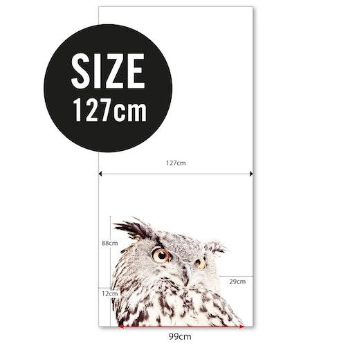 Magnettapet (127 x 265 cm) - UGGLA - från Groovy magnets