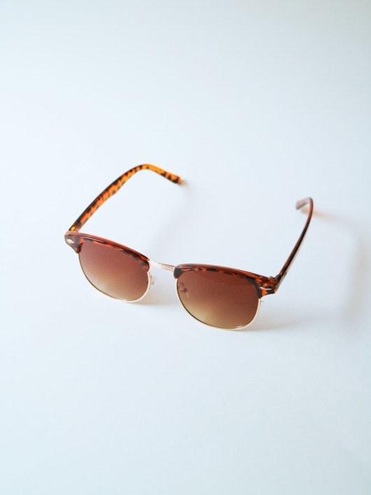 Monroe Solglasögon