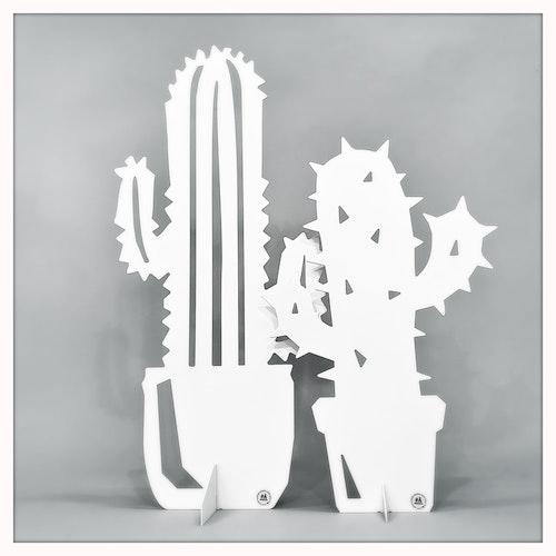 Kaktusar i par - paketerbjudande