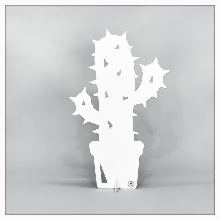 Kaktus liten