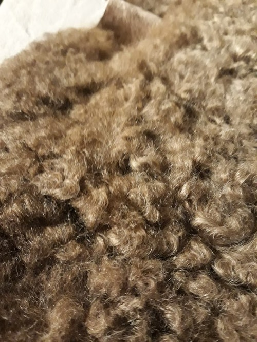 Gråbrunt lammskinn, unik färg (#9)