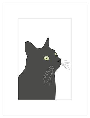 Poster Svarta Katten, europé