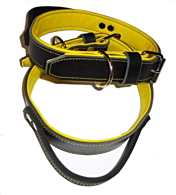 Halsband med handtag, svart/gul