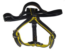 K9-Sport Lädersele, gul