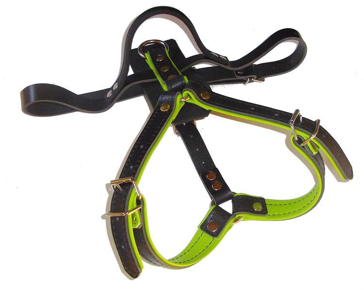 K9-Sport Lädersele, limegrön