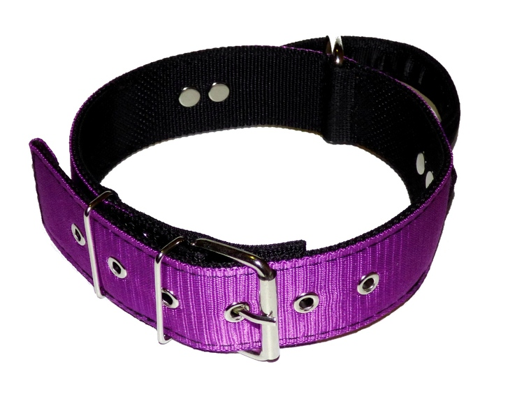 "Halsband ""Working Dog"" 5 cm bred, lila"