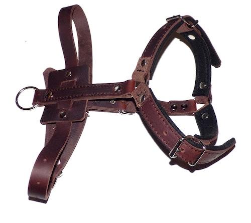 Lädersele för skyddsträning