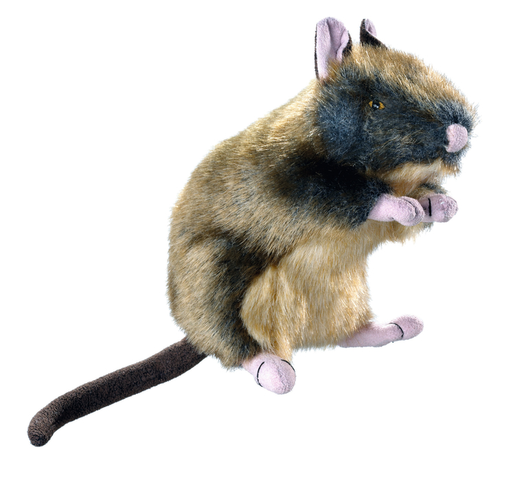 HUNTER Hundleksak utan pip Wildlife Råtta