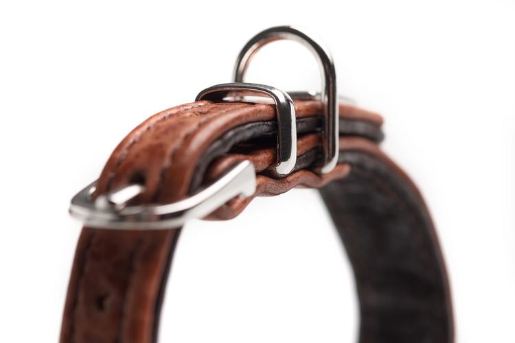 HUNTER Cody Petit Hundhalsband Cognac/Mörkbrun