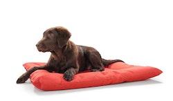HUNTER Hunddyna Gent Antibakteriell Röd