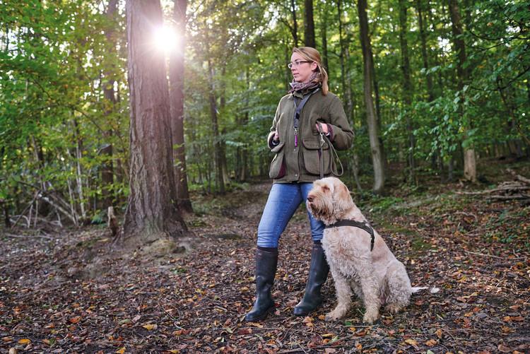 HUNTER Spårsele Hunting Nubuckläder Brun