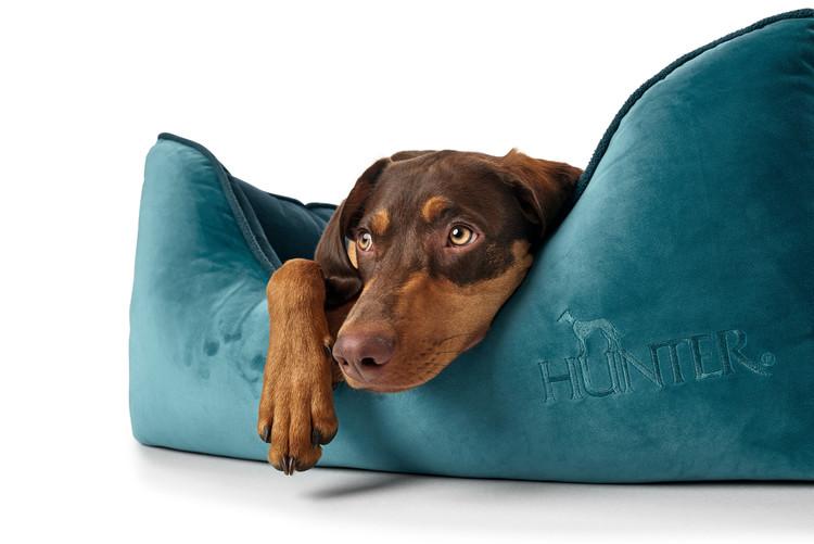 HUNTER Bristol Hundbädd Petrol/Terracotta