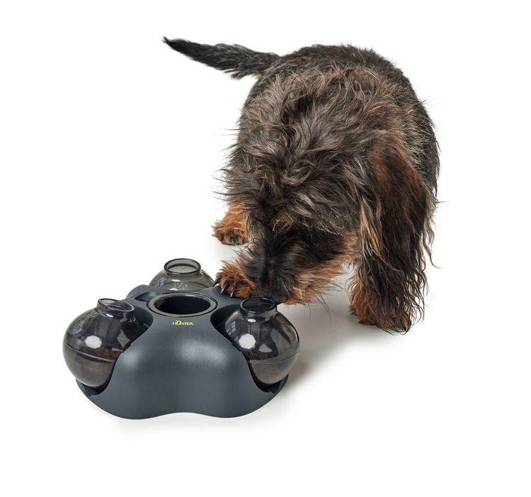HUNTER Kem Interaktiv Hund- och Kattleksak
