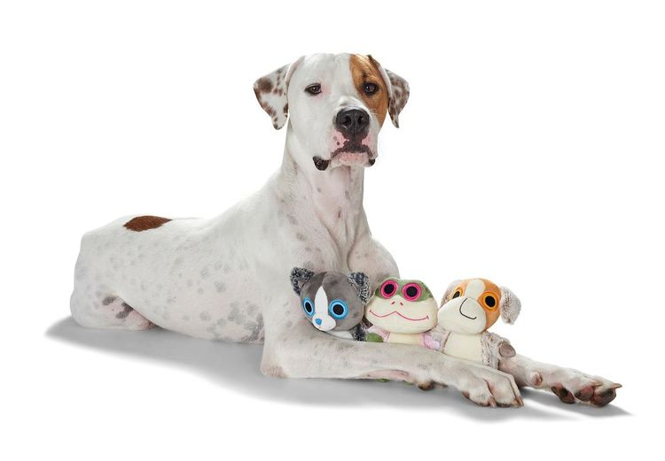 HUNTER Dilley Hundleksak Mjukis Hund
