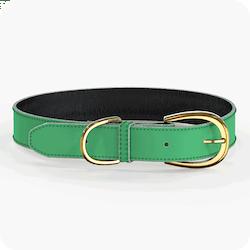 Swaggin Tails Halsband Grön