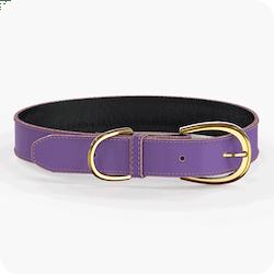 Swaggin Tails Halsband Lila